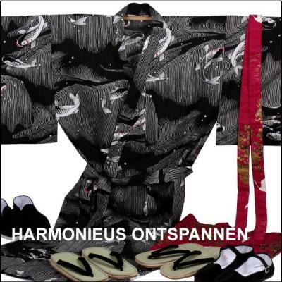 HArmonieus-ontspannen-zw comp